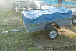 Прицеп Титан 2.3х1.4 Окрашеный Полимерный в Воронеже